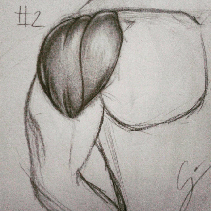 Deltoid Drawing Exercise 02 by CJHibari02 on DeviantArt
