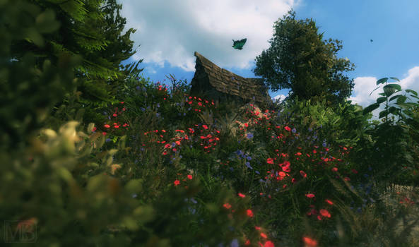 Lil Place on the Hill v1.0
