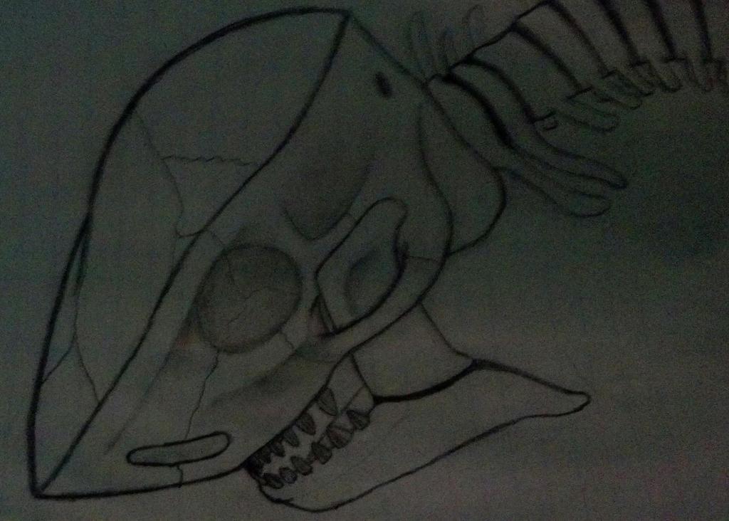springback skull by kabrox18