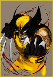 Wolverine_Coloring