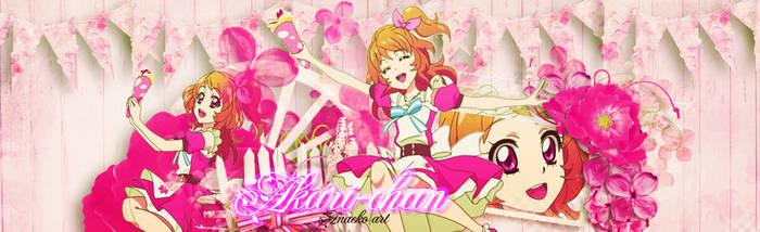 Cover 1:  Cover Akari