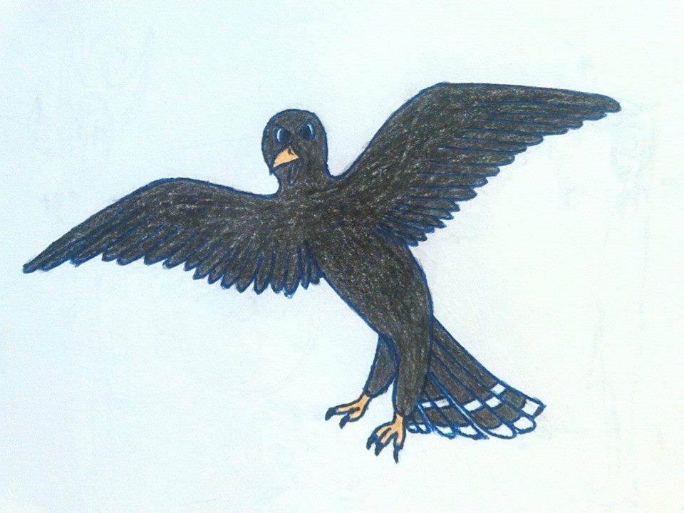 black_hawk_by_dragonmage156-daq2nmz.jpg