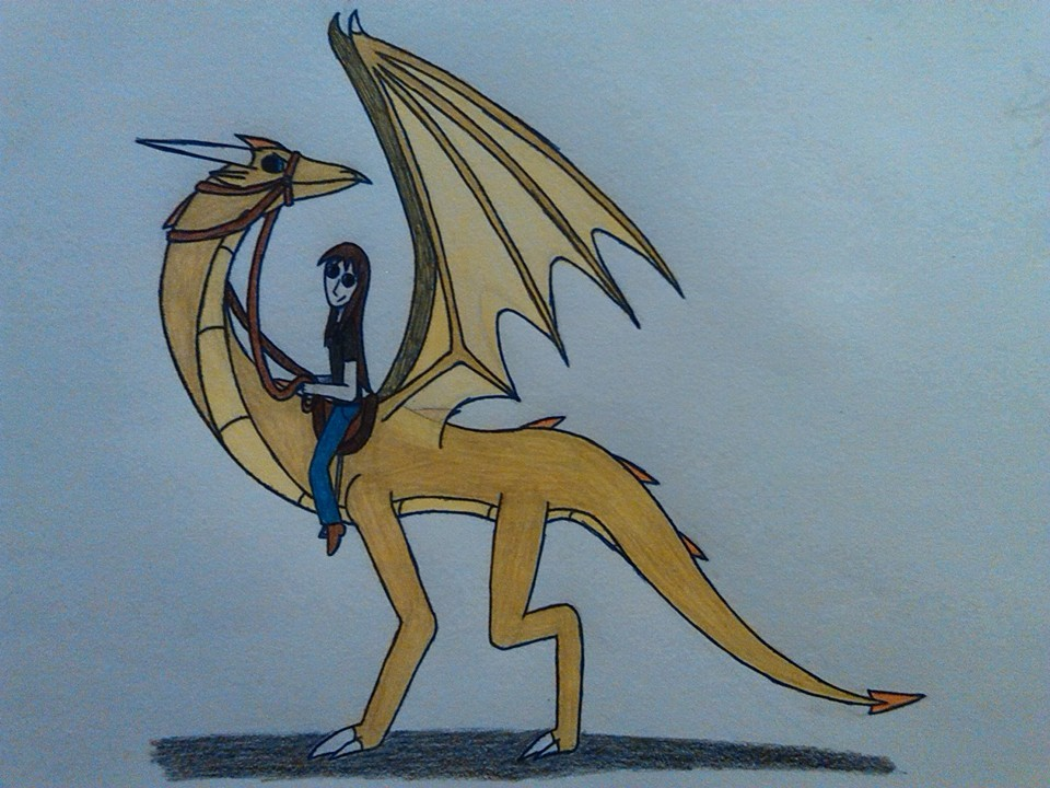 dragon_rider_by_dragonmage156-dasnjux.jp