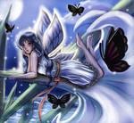 Night Butterflies