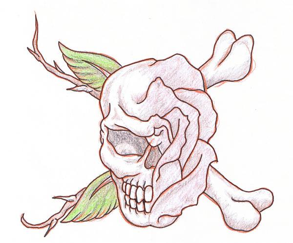 Skull Tattoo Sketches