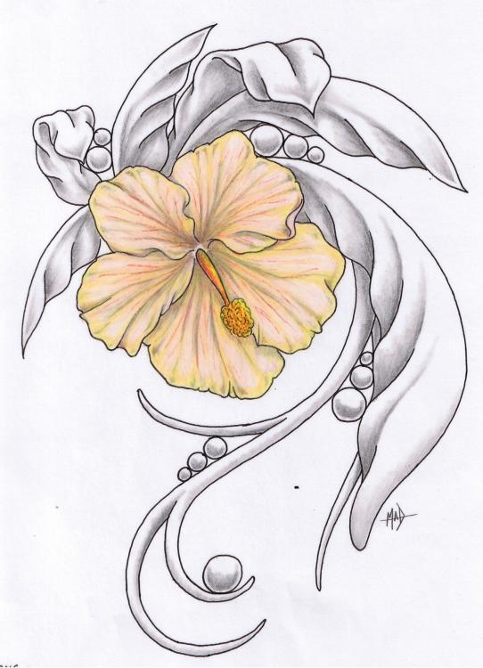 Hibiscus Tattoo Outline: Hibiscus Tattoo By Madtattooz On DeviantArt