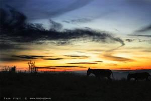 Sunset by PopiX