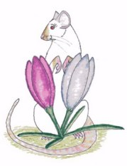 Spring Rattie by CatwingsV