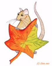 Autumn Rattie by CatwingsV