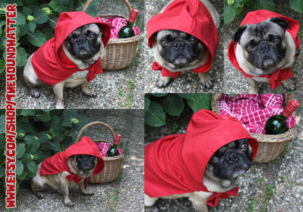 Little Red Riding Hood Cape for Dogs by ImogenSmid