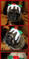 The Christmas Pudding Dog Hat