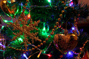 Christmas Tree 5 by Enolla