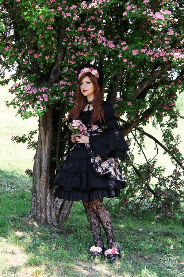 Classic Rose Lolita 5 by Enolla