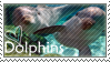 Dolphins - Stamp