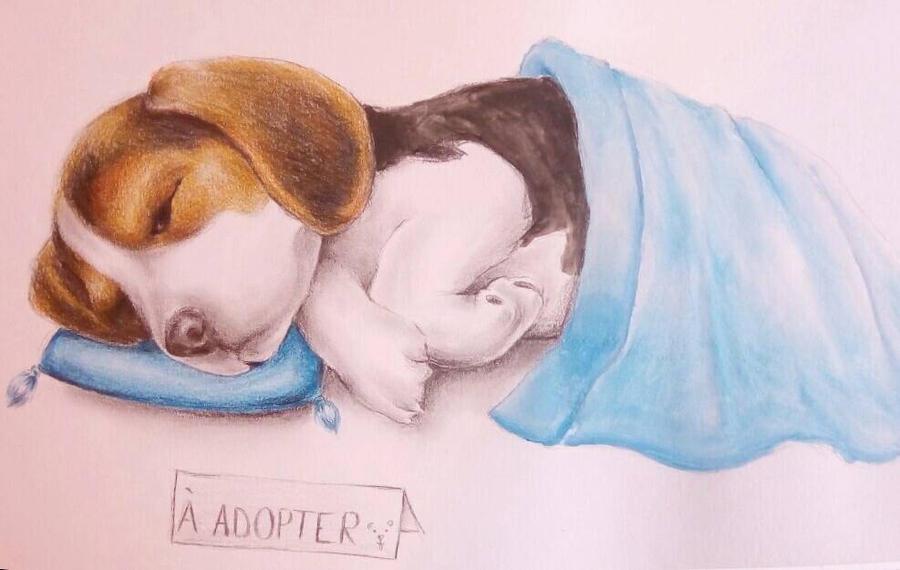 sleeping puppy by Lunipae