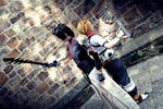 meaningless  - Terra and Ventus (KH-BBS)