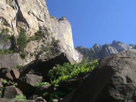 Mountain in Yosemite