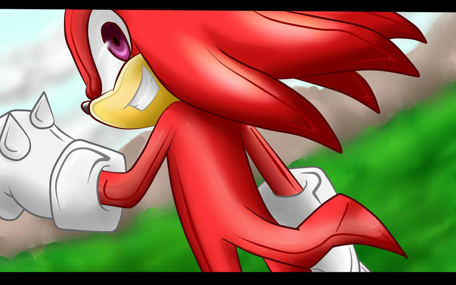 one hour.-knuckles the echidna by D-Winter