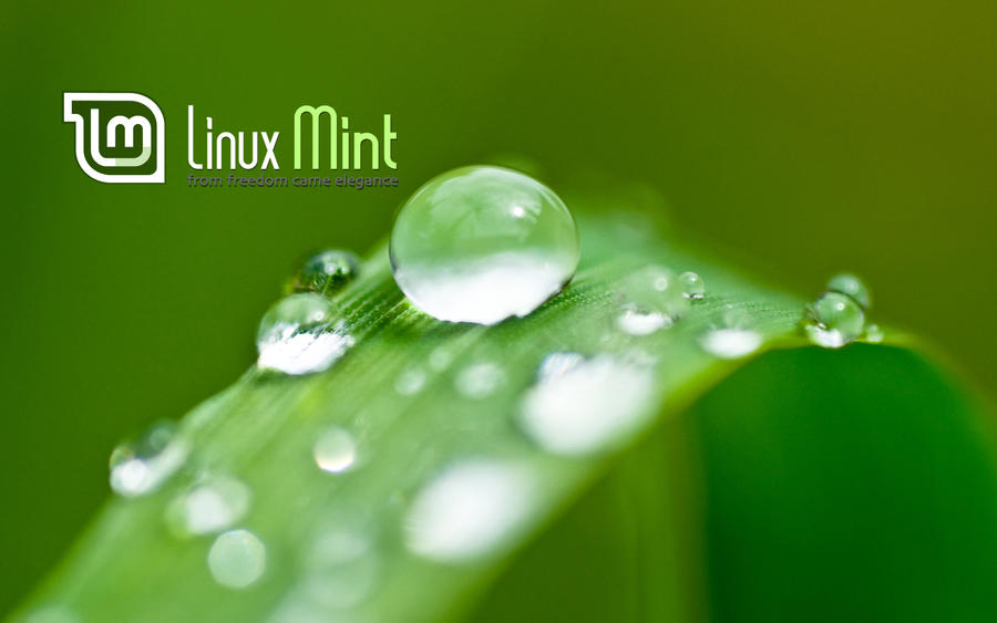 Wallpaper for Mint 44 by malvescardoso