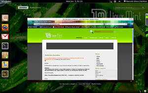 Gnome 3 in Linux Mint-6 by malvescardoso