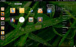 Gnome 3 in Linux Mint-7