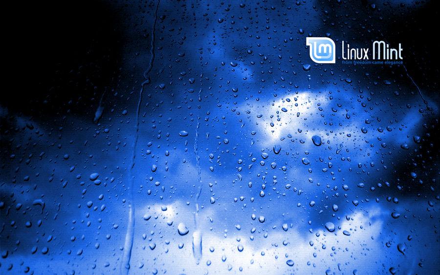 Mint in the blue rain 1 by malvescardoso