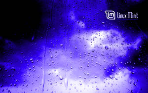 Mint in the blue rain 2 by malvescardoso