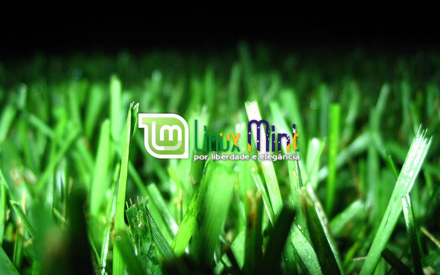 To Linux Mint Brazil [d by malvescardoso
