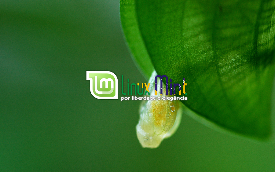 To Linux Mint Brazil [e by malvescardoso