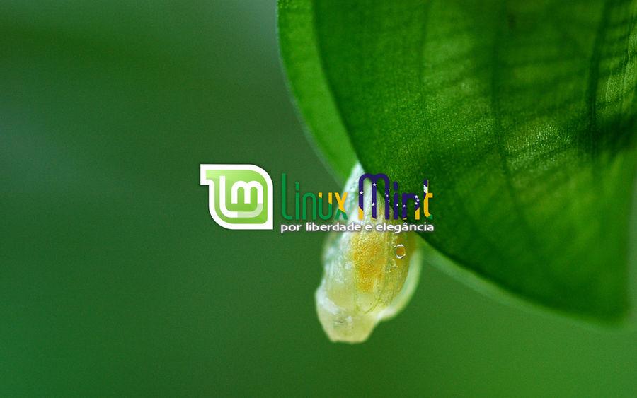 To Linux Mint Brazil [e by malvescardoso