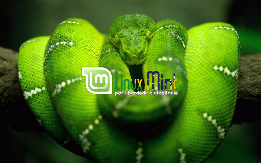 To Linux Mint Brazil [h by malvescardoso