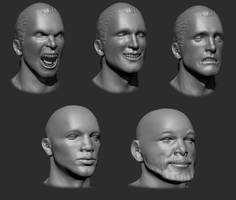 Expresions and races studies