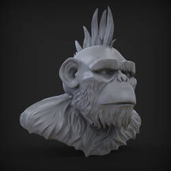 Punk Chimp