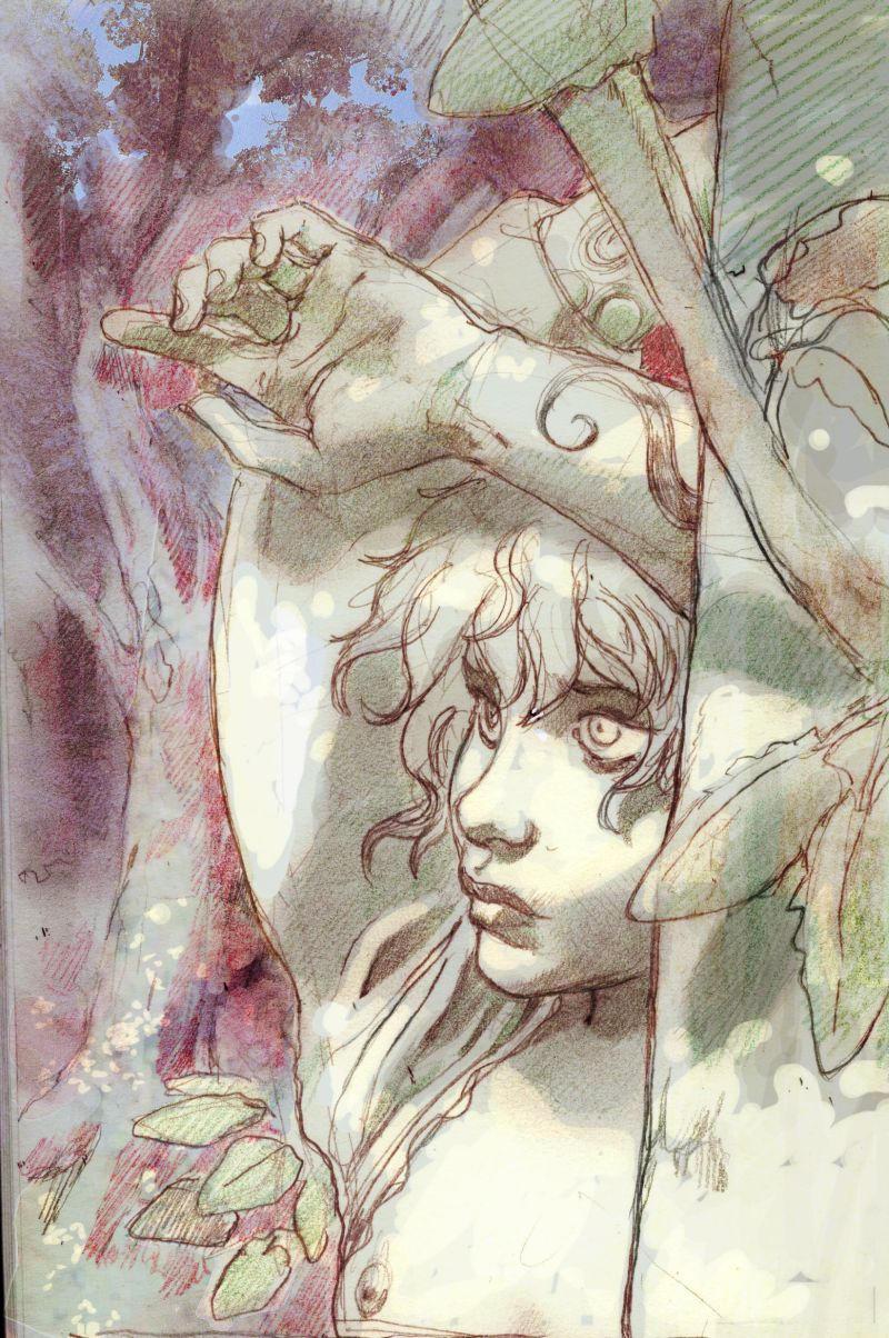 forest boy by jjfrenchie