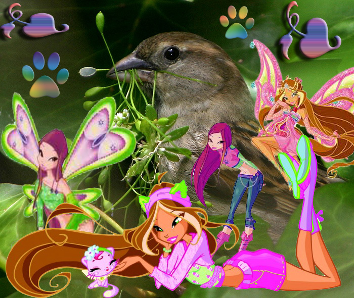 Roxy and Flora, Fairies of Nature and Animal by xXLolipopGurlXx