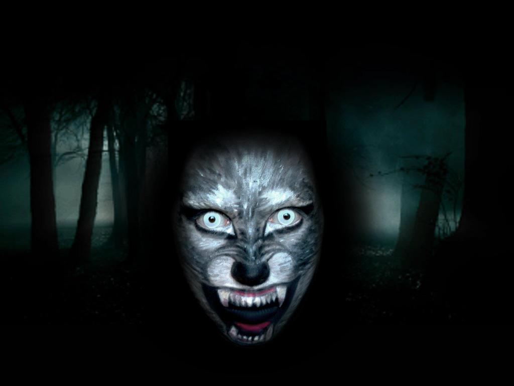 Wolf Face Makeup by AleMeller13 on deviantART