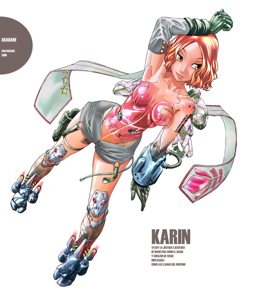 karin by aradane