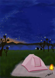 Camping At Night by cristinaw