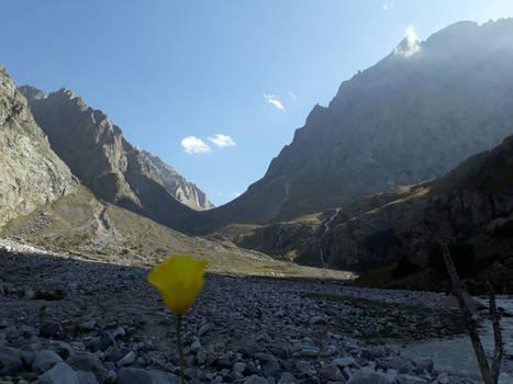 Belogorka Kyrgyzstan 2019