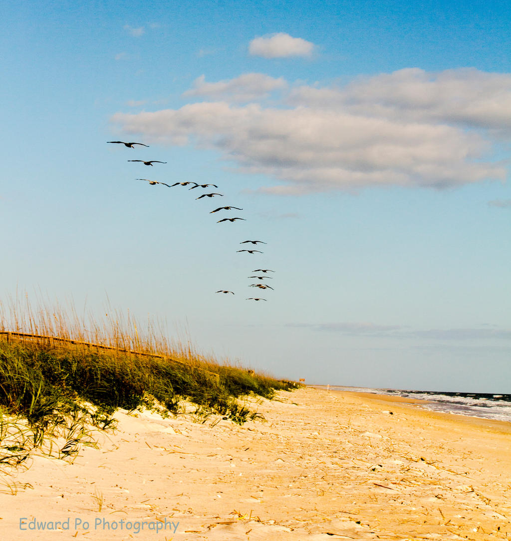 Playalinda Beach -Canaveral National Seashore by FrodoPrime