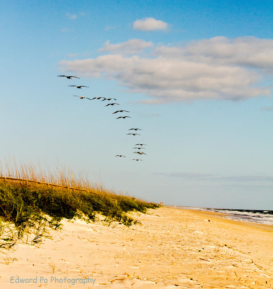 Playalinda Beach -Canaveral National Seashore by FrodoPrime