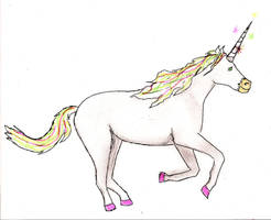 Never Forget the Unicorns