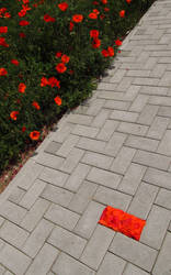 Land Art - Red Brick 02