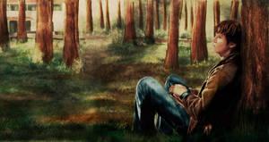 SPN: Under pines