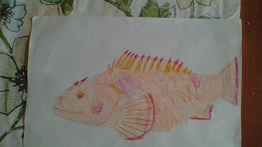Scorpion fish by Dracorider19