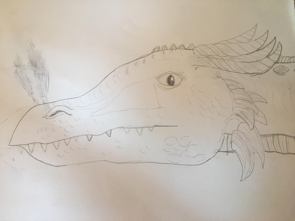 Detail of a dragon head by Dracorider19