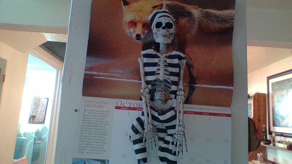 My Halloween skeleton! by Dracorider19