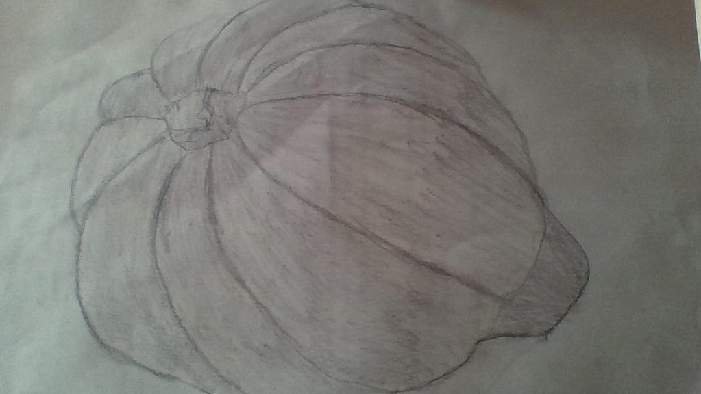 Acorn Squash by Dracorider19