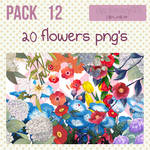 Pack 12 - 20 flowers png's