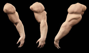 Veins of the V4 Arm Test by Stone3D